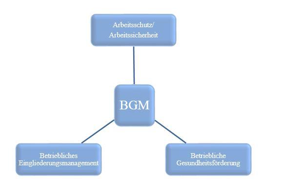 BGM Handlungsfelder
